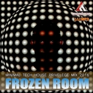 Frozen Room: Minimal Tech House (2016)